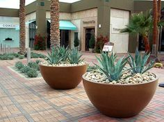 large planters commercial colored - Google Search
