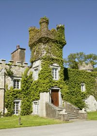 Cabra Castle Hotel in Ireland highly recommended by Kathy.