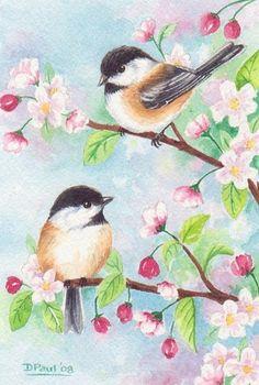 Spring chickadees: