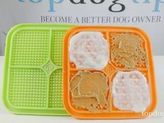 Review: Hyper Pet IQ Treat Mat Dog Ear Cleaner Homemade, Homemade Dog Food, Dog Whisperer Tips, Dog Ear Mites, Schnoodle Dog, Overweight Dog, Coconut Oil For Dogs, Pet Allergies, Dog Grooming Business