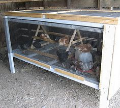 Grow-out Pen with Mini-Chicken Ladder Perch  http://www.westknollfarm.com/housing.html