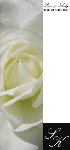 White Rose Wedding Invitations, many options of Rose colours to choose from. View details http://www.idovedesign.com.au/f6W-white-rose-wedding-invitations-stationery.html