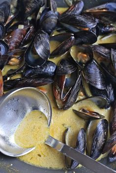 curried #mussels - #recipes #food