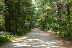 Arrowhead Provincial Park Ontario Canada Ontario Parks, Places To Visit, Country Roads, Canada, Summer, Summer Recipes, Summer Time, Verano