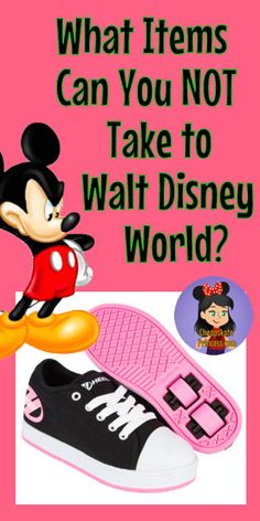 5498731fef6 Items You Can NOT Bring to Disney Theme Parks  A Cheapskate Princess Guide  - Disney s