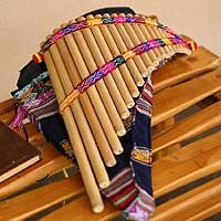 This collection is full of wonderful Peruvian panpipes, zampoñas, and quena flutes by Benito Tito and Dionisio Quilla. For your enjoyment, here is a lovely and authentic interpretation of the song, El Cóndor Pasa , which actually was written in 1913, but is based on traditional Andean folk songs. The video is accompanied by amazing photos of the region, too. Enjoy! :)  http://www.youtube.com/watch?v=lLOKMMijXzQ http://en.wikipedia.org/wiki/El_Cóndor_Pasa_(song)