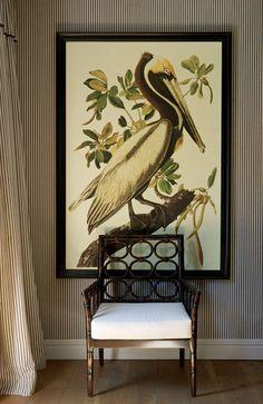 John Jacob Interiors: Chic ticking fabric perfect with art, a John Audubon BROWN PELICAN.