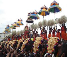 Kuda Mattam during Thrissur pooram festival in Kerala state, south India Cochin, South India Tour, Onam Festival, Best Holiday Destinations, Kerala Tourism, Kerala India, Indian Festivals, Tourist Places, India Travel
