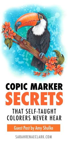 Copic Marker Secrets that Self-Taught Colorers Never Hear