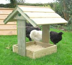 Chicken Dustbath & Feeder Shelter