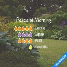Peaceful Morning - Essential Oil Diffuser Blend