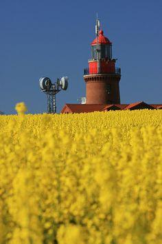 May flowers near the Baltic (Ostseeküste), Germany   Achim Thomae via Flickr