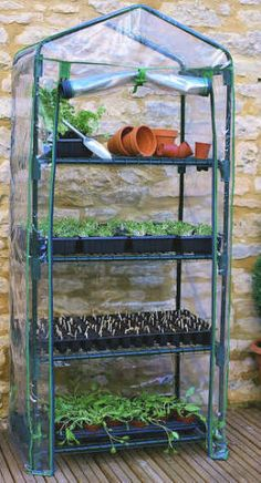 4 tier mini greenhouse is great for beginners when starting a Potted Vegetable Garden. In here you can raise seedlings. Bring sick plants back to health and grow plants throughout the winter. I use mine to start plants extra early in spring too. Diy Greenhouse Plans, Best Greenhouse, Portable Greenhouse, Backyard Greenhouse, Greenhouse Wedding, Homemade Greenhouse, Pallet Greenhouse, Miniature Greenhouse, Greenhouse Cover