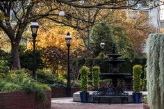 A beautiful image of the fall colors in the Ripley Garden from Smithsonian photographer Eric Long.