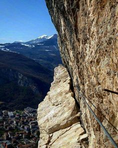 Mori Monte Albano Marangoni
