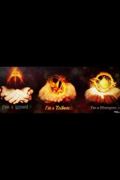Well, I'm not part of the Hunger Games fandom, but I'll still repin this.