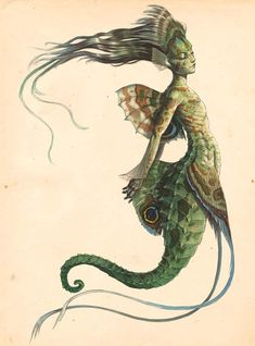 """""""Pacific Sea-Maid"""" by Tony DiTerlizzi from Arthur Spiderwick's Field Guide to the Fantastical World Around You"""