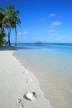 Maldives…….2nd only to Santorini..!!  The clearest water you will ever see !!!
