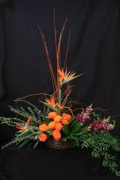 Daylily Floral & Gifts, Grand Rapids & Caledonia, Michigan