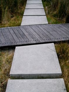 Simple and effective use of hardwood timber and in-situ concrete for intersecting formal/informal paths. Wetland garden, Waitangi Park, Wellington. Wraight  Associates Landscape Architecture. Photo: hinter/DM