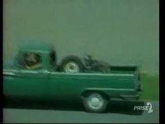 Le vagabond (titre original : Littlest Hobo) est une série canadienne également diffusée en France à partir de 1981. Elle raconte l'histoire d'un chien errant mais qui à chaque épisode vient en aide à une famille : larmes garanties !!  #àrireetàpleurer