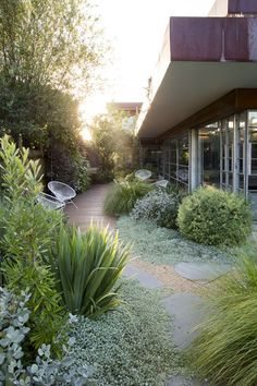 *soft, ground cover, grasses, gravel, green with grey toned foliage.