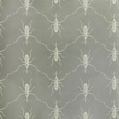 Design is in the Detail. Paul + Showroom. Buggie.
