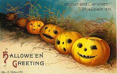 public domain vintage halloween postcard row of jack o lanterns | Free Vintage Illustrations