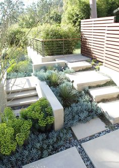 Blindsiding Cool Tips: Garden Landscaping Design Website modern garden landscaping white hydrangeas.Garden Landscaping Design How To Grow desert garden landscaping southern california. Succulent Landscaping, Modern Landscaping, Front Yard Landscaping, Landscaping Ideas, Landscaping Software, Outdoor Landscaping, Landscaping Company, Succulent Plants, Landscaping Plants