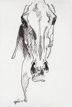 Alert 1 Horse Head Black Ink Original Drawing by benedictegele