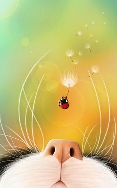Ladybug by Jessica Aoki Almeida