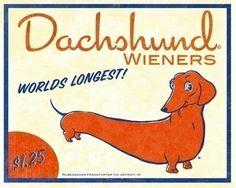 Dachshund Vintage Hot Dog Label Art by rubenacker on Etsy https://www.etsy.com/listing/62516824/dachshund-vintage-hot-dog-label-art