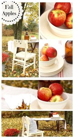 Decorate this Fall using Apples