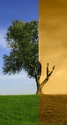 Global warming by DejoZ