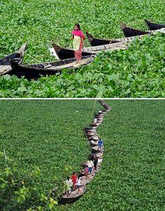 http:/bangladesh.mycityportal.net - A Floating Bridge in Bangladesh - http://bangladesh.mycityportal.net