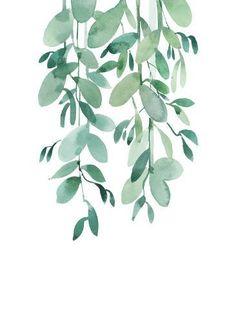 tropical-wall-art-leaf-eucalyptus-jpg - paint and art Watercolor Plants, Watercolor Leaves, Watercolor Paintings, Watercolour, Green Watercolor, Plant Painting, Plant Art, Spray Painting, Body Painting