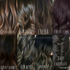 Black Coffee Hair With Ombre Highlights - 10 Cool Ideas of Coffee Brown Hair Color - The Trending Hairstyle Hair Color For Brown Eyes, Brown Hair Shades, Chocolate Brown Hair Color, Hair Color Shades, Cool Tone Brown Hair, Dark Ash Brown Hair, Medium Brown Hair, Dark Brunette Hair, Brunette Color