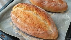 Niet nad čerstvý chlebík a tento podľa receptu z youtube si určite zamilujete. Je fantastický a jeho príprava je veľmi jednoduchá.Potrebujeme:10 g čerstvého droždia250 ml teplej vody10 g cukru7 g soli320 g chlebovej múky (množstvo … Savory Pastry, Savoury Baking, Bread Baking, Serbian Recipes, Bulgarian Recipes, Artisan Bread Recipes, Baking Recipes, Pan Ranchero, Biscuit Bread