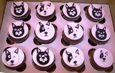 Boston Terrier Cupcakes by jennywenny, via Flickr