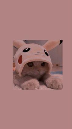 Cute Kawaii Animals, Baby Animals Super Cute, Cute Baby Dogs, Cute Little Animals, Baby Cats, Wallpaper Gatos, Cute Panda Wallpaper, Cute Patterns Wallpaper, Cute Little Kittens