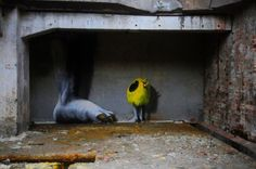 Giant Foot Graffiti spotted at the abandoned Papermill Wolfswinkel in Eberswalde, Germany
