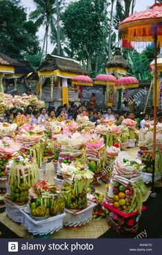 Offerings at Balinese Temple, Ubud Stock Photo Balinese, Ubud, Temple, Police, Law, Student, Stock Photos, Temples, Balinese Cat