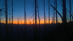 Davis peak trail, Washington
