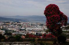 Cidade de Braga vista do Bom Jesus