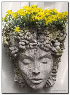 Face container adorned with a golden halo of Sedum 'Cape Blanco' flowers. Face container adorned with a golden halo of Sedum 'Cape Blanco' flowers. Face Planters, Garden Planters, Succulents Garden, Flowers Garden, Garden Statues, Garden Sculpture, Plantation, Garden Ornaments, Green Man