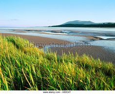 Find the perfect dumfries stock photo. Huge collection, amazing choice, million high quality, affordable RF and RM images. Scotland, Stock Photos, Beach, Water, Outdoor, Image, Gripe Water, Outdoors, Seaside