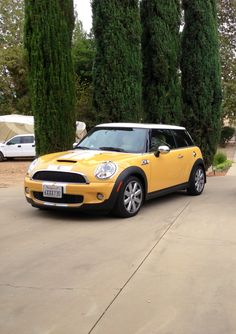 My mellow yellow MINI Cooper S. Yellow Mini Cooper, Mini Cooper Stripes, New Mini Cooper, Mini Coopers, Mellow Yellow, Scooters, Cali, Minis, Motorcycles