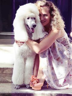 Poodle Dogs Charlotte Dellal with her poodle, Blade. - Like her smile-inducing bags and heels, the London-born Charlotte Olympia designer puts the fun in fashion. French Poodles, Standard Poodles, Tea Cup Poodle, Pink Poodle, Poodle Cuts, Bulldog Breeds, Poodle Grooming, Most Popular Dog Breeds, Dog Boarding