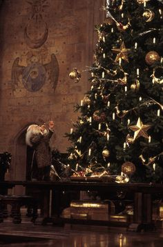 Hogwarts at Christmas. Harry Potter with Professor Flitwick Harry Potter Magie, Magia Harry Potter, Harry Potter Books, Harry Potter Hogwarts, Harry Potter Navidad, Harry Potter Weihnachten, Hogwarts Christmas, Harry Potter Christmas, Merry Christmas