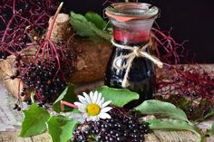 Recipe for homemade elderberry syrup, a natural remedy to prevent & treat cold & flu. Herbal medicine for adults & children. Elderberry Growing, Elderberry Benefits, Elderberry Juice, Elderberry Recipes, Flu Remedies, Home Remedies, Natural Remedies, Natural Treatments, Health Remedies